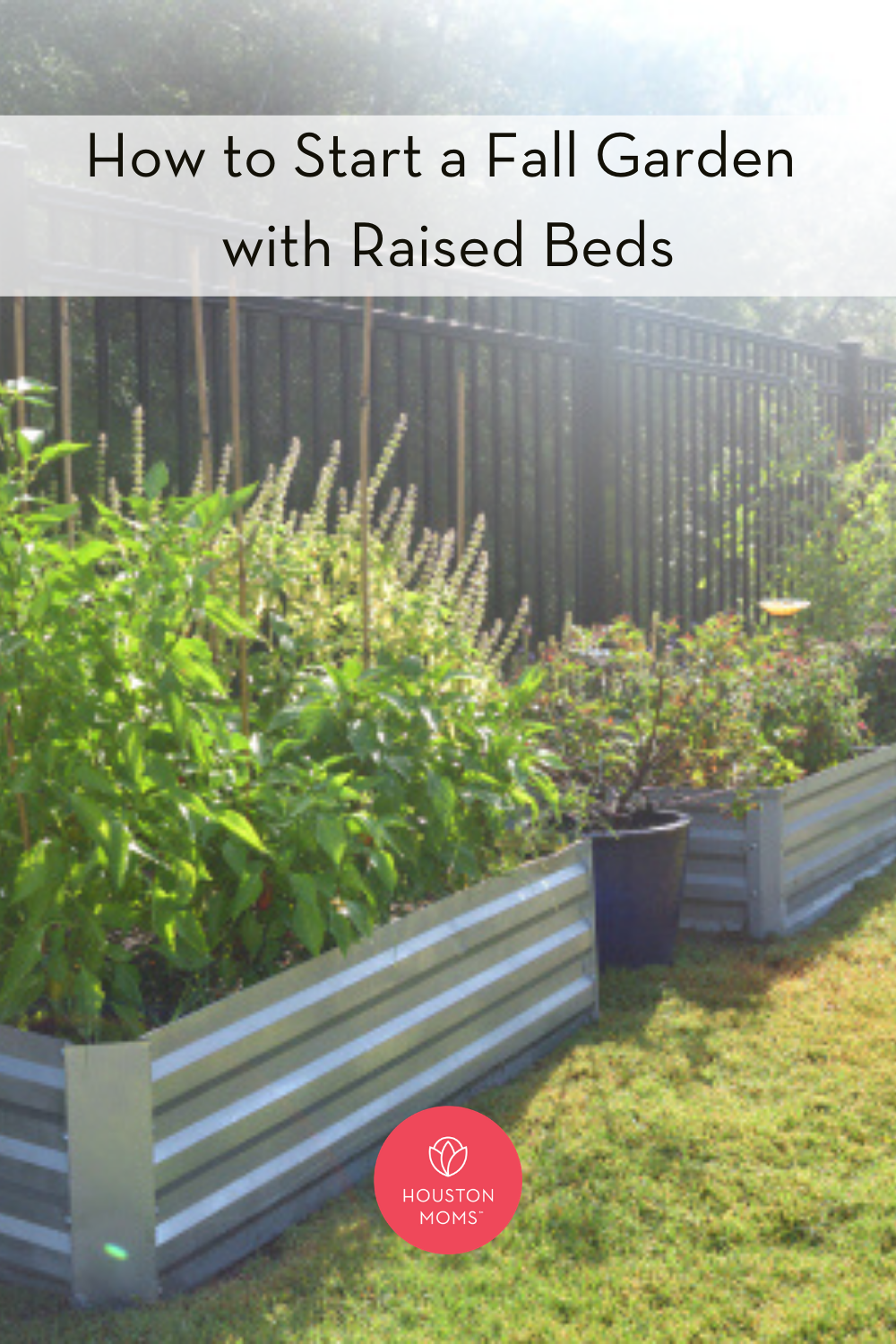 "Houston Moms ""How to Start a Fall Garden with Raised Beds"" #houstonmoms #houstonmomsblog #momsaroundhouston"