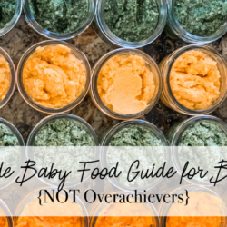 Homemade Baby Food Guide