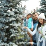 The Best Houston Area Christmas Tree Farms 2020