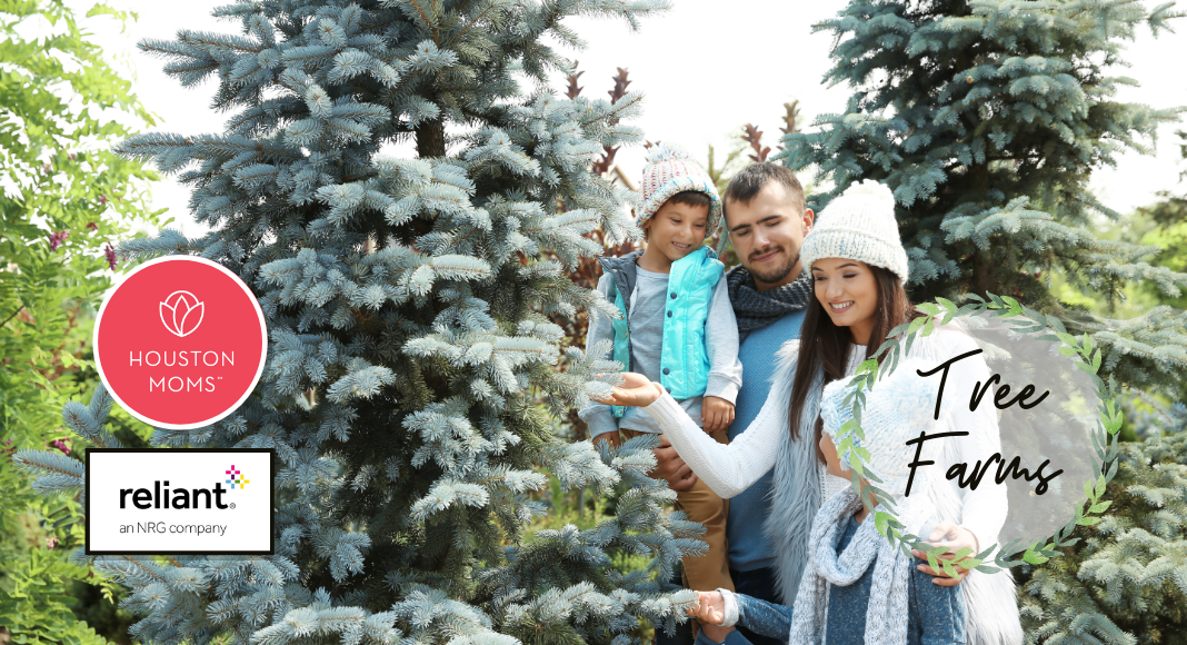 """Houston Moms """"Guide to Tree Farms in Houston"""" #houstonmoms #houstonmomsblog #momsaroundhouston"""