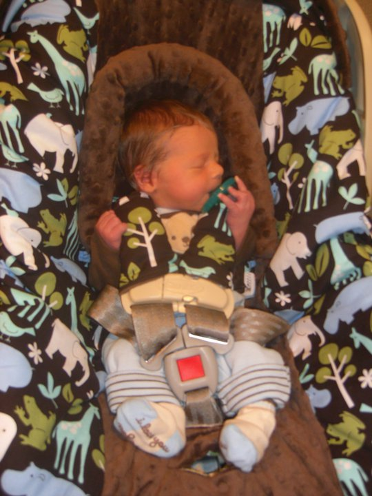 a newborn baby in an infant carrier