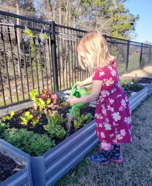 Eat More Fruits and Veggies This Month by Growing Your Own!